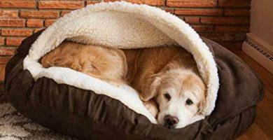 cama nido para perros